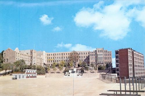 1981 학교 전경