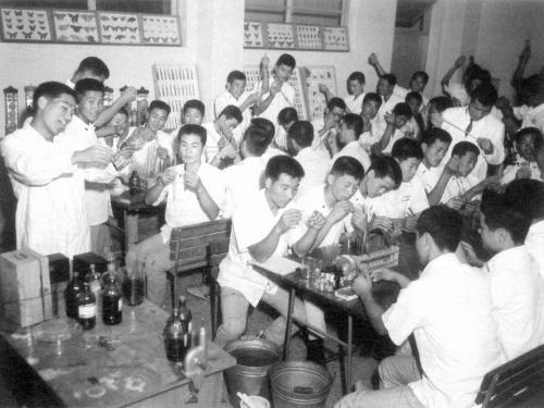 1966 생물반